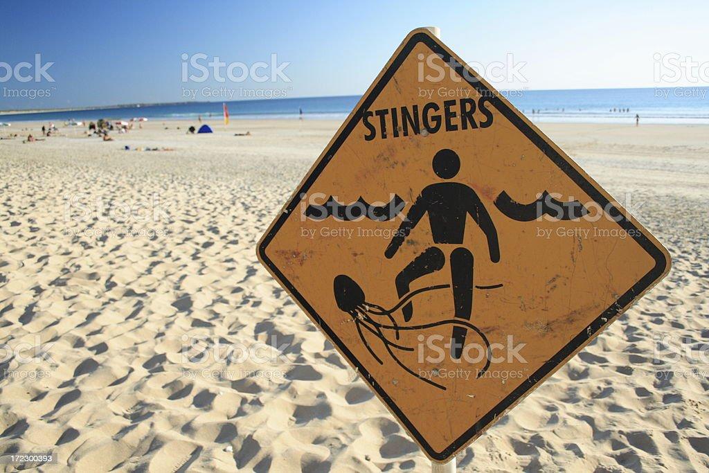 Stingers stock photo