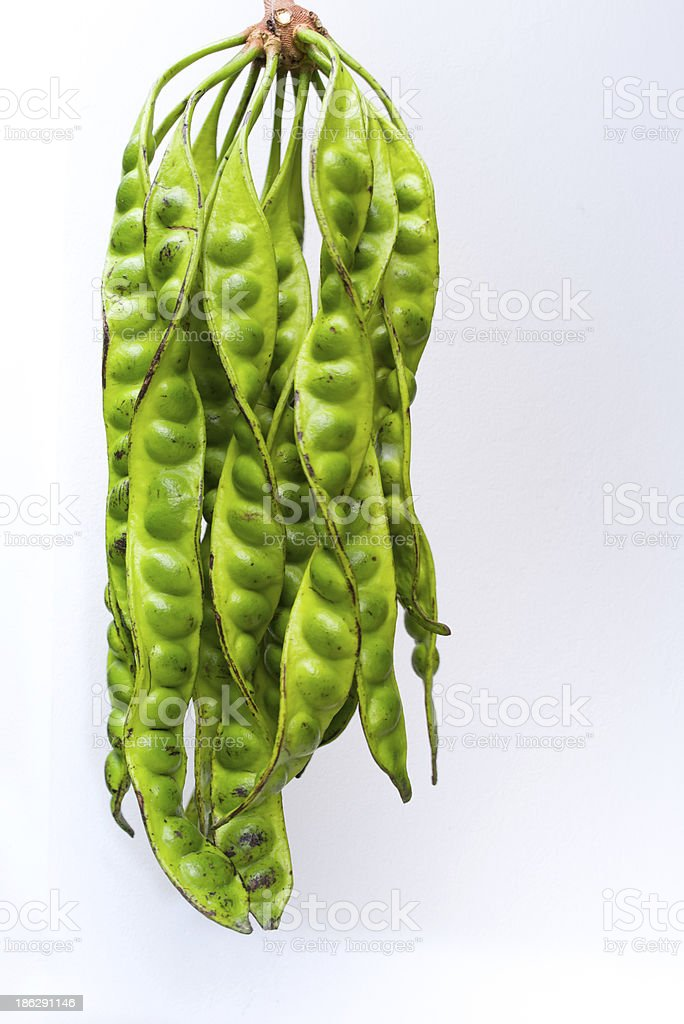 Stink beans royalty-free stock photo