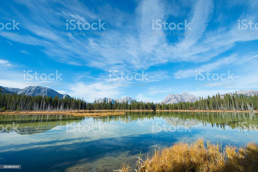 Stock Photo Buller Pond Kananaskis Rocky Mountains Canada stock photo