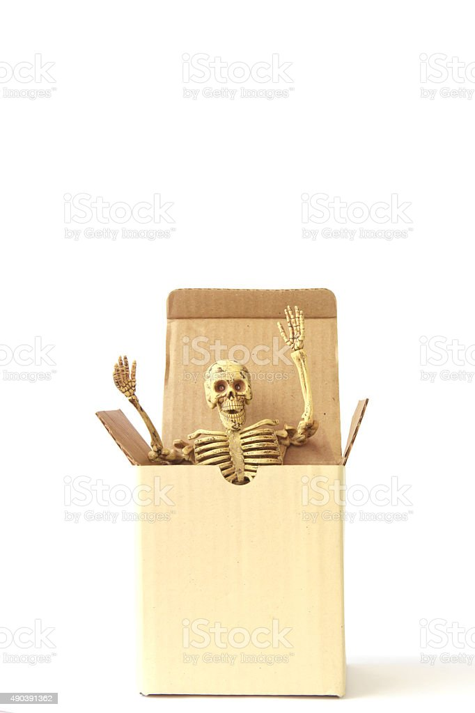 stock photo human skeleton in paper box stock photo 490391362 | istock, Skeleton