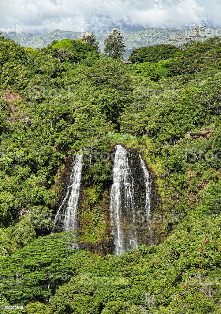 Stock Photo of Opaekaa waterfalls , Kauai Hawaii stock photo