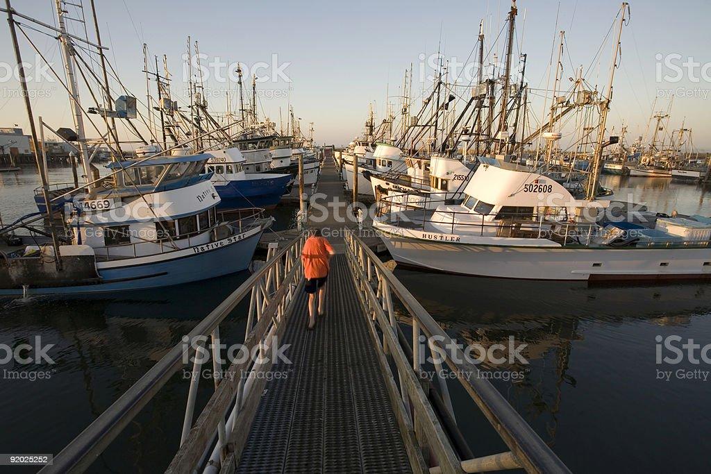 Stock Photo of the Marina in Westport, Washington stock photo