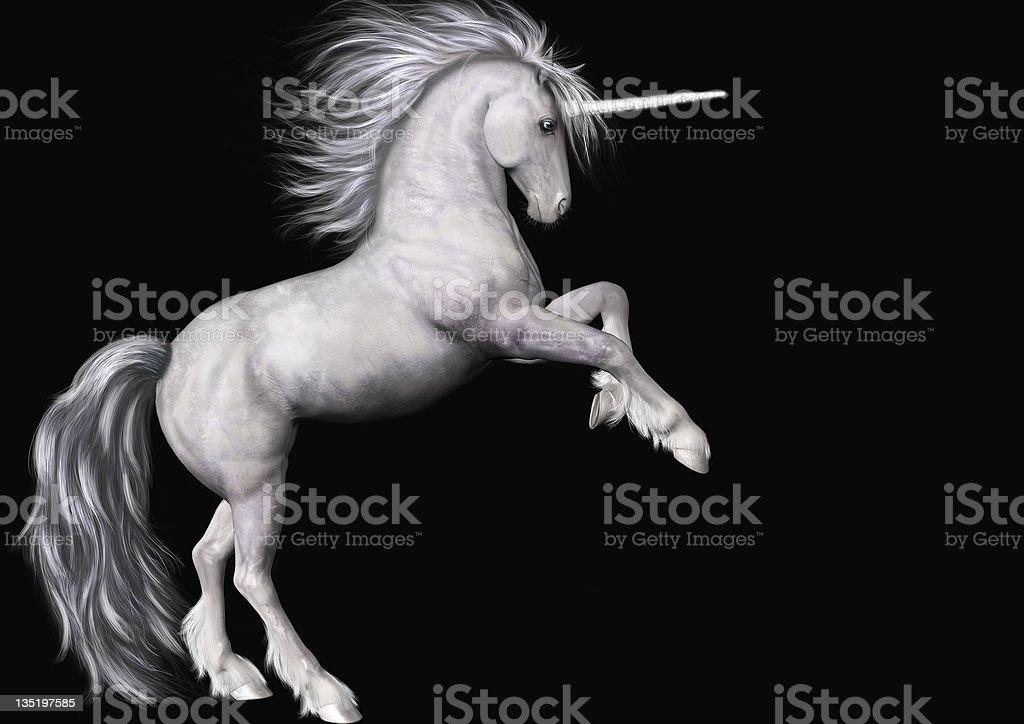 Stock Unicorn Isolated on Black royalty-free stock photo