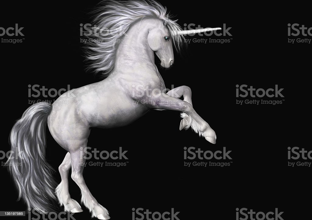 Stock Unicorn Isolated on Black stock photo