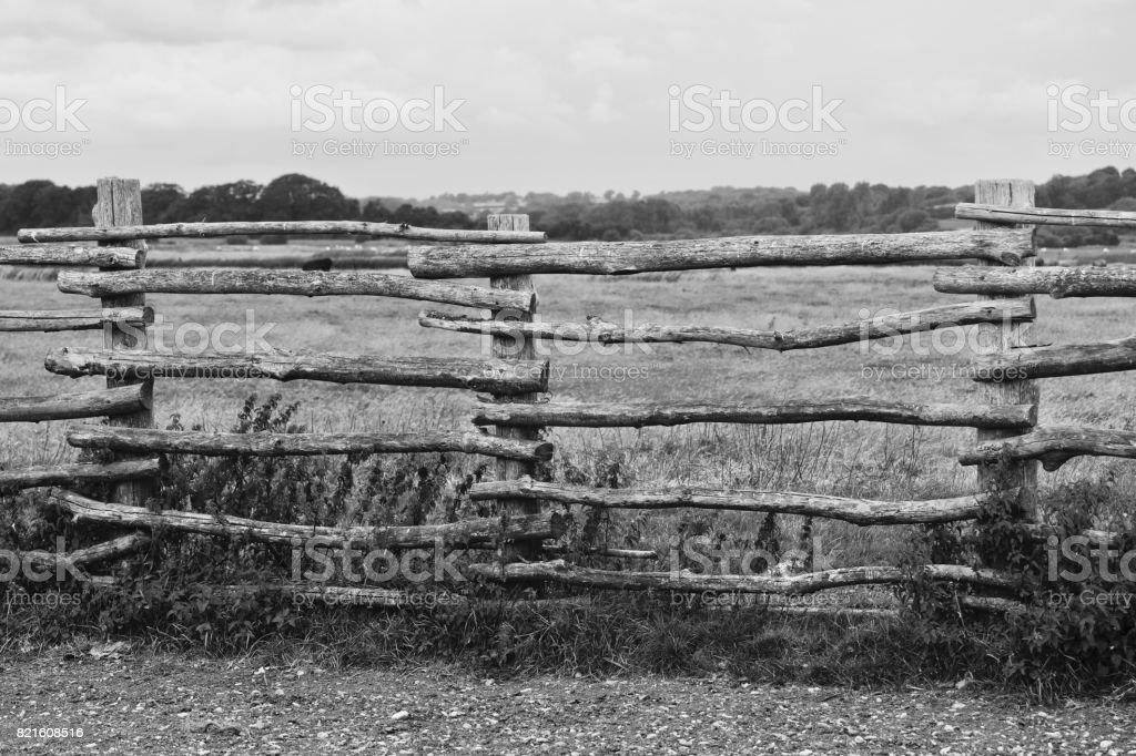 Stockade Fence. Pett Level stock photo