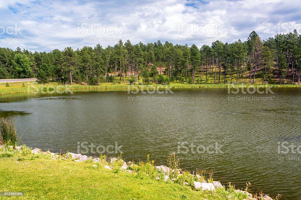 Stockade Lake in Custer State Park stock photo