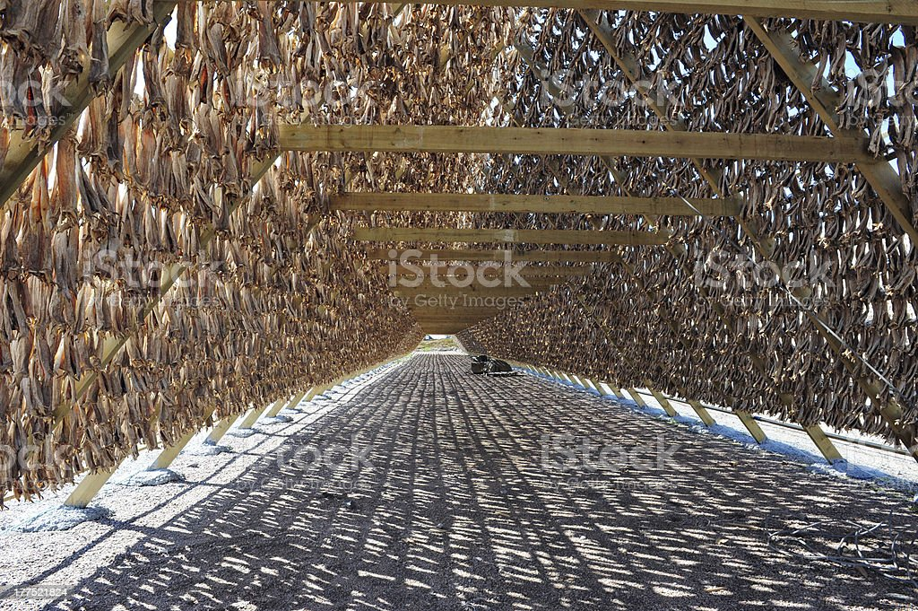 Stockfish stock photo
