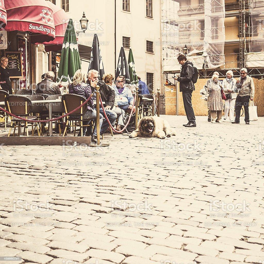 Stockholm old town street scene. stock photo