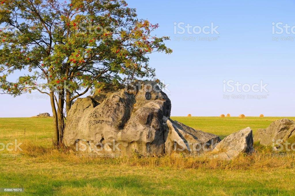 Stolowe Mountains savanna in Silesia stock photo