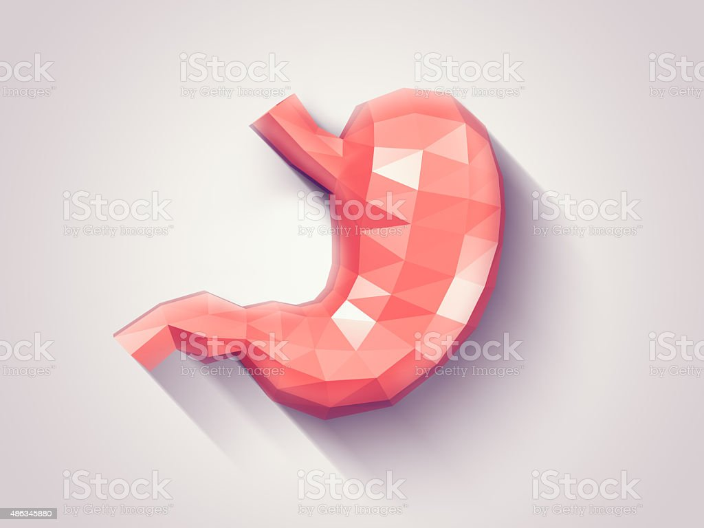 Stomach faceted stock photo
