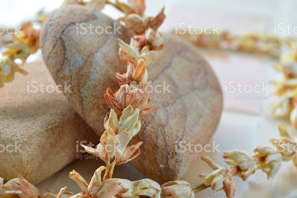 stone and dry jasmine flower for skin spa stock photo