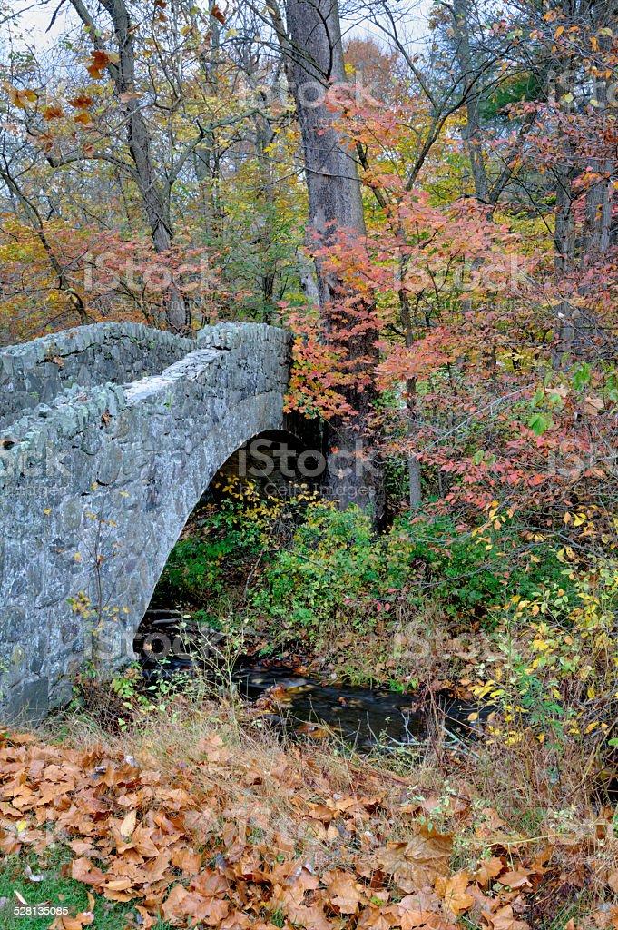 Stone Arch Bridge in Fall Woods, Autumn Scenery stock photo