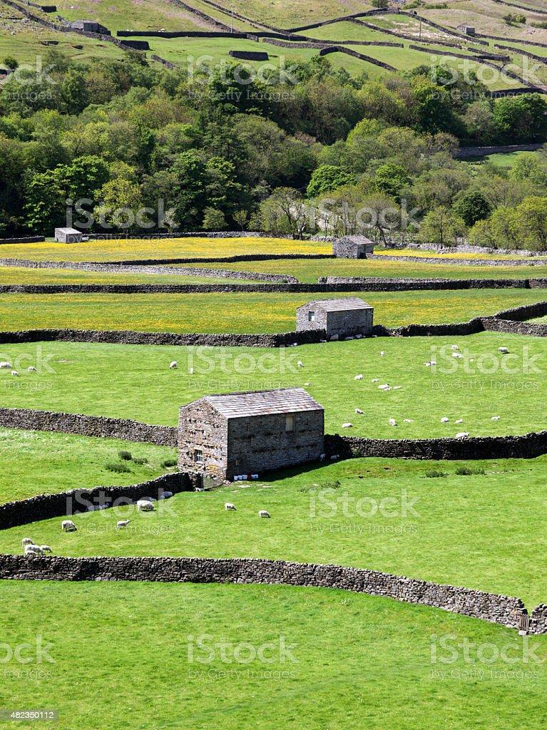 Stone barns, Gunnerside stock photo
