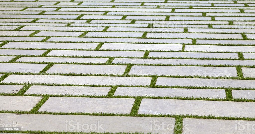 Stone block walk path in the park with green grass royalty-free stock photo