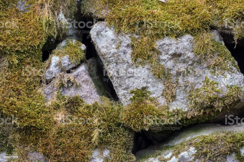 Stone blocks covered with green moss. Close up photo. stock photo