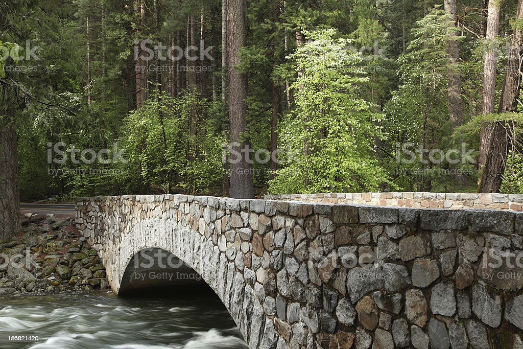 Stone Bridge in Forest royalty-free stock photo