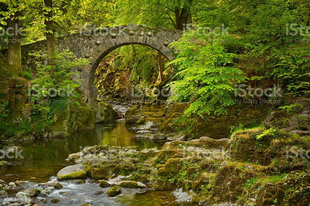 Stone bridge over a river in Northern Ireland stock photo