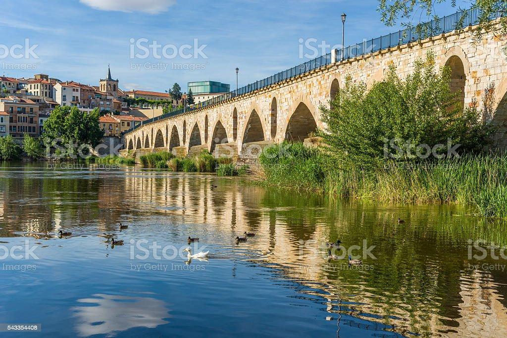 Stone bridge over Duero river. Zamora, Castilla y Leon, Spain. stock photo