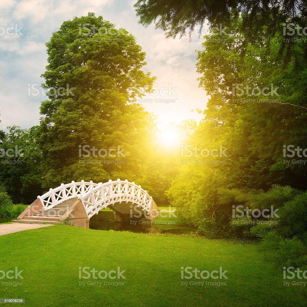 Stone bridge over stream. sunrise stock photo