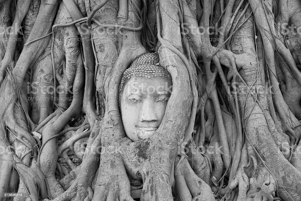 Stone Buddha head stock photo
