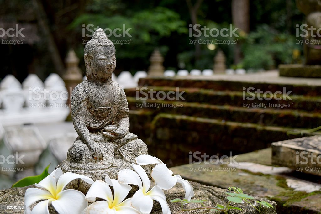 Stone Buddha statue  with moss and Frangipani flowers stock photo