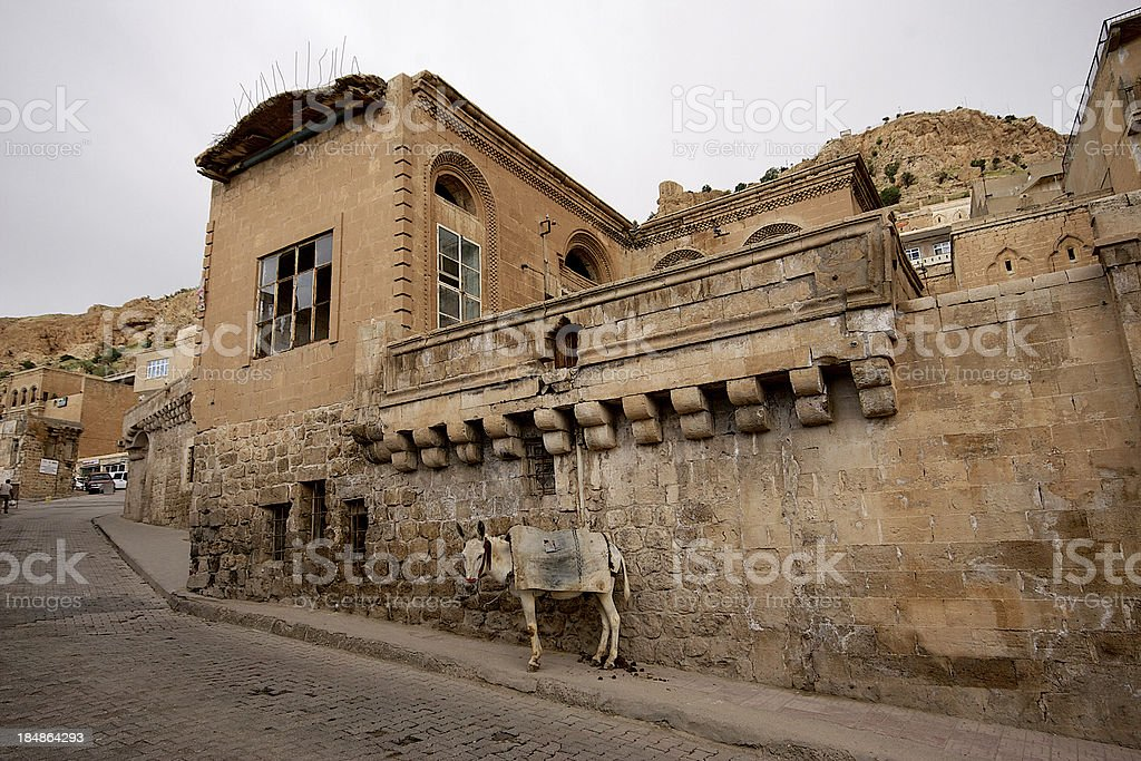 Stone buildings and donkey in Mardin old town Turkey. stock photo