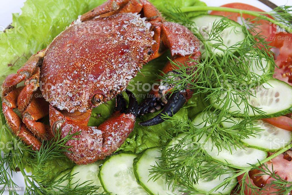 Stone crabs royalty-free stock photo