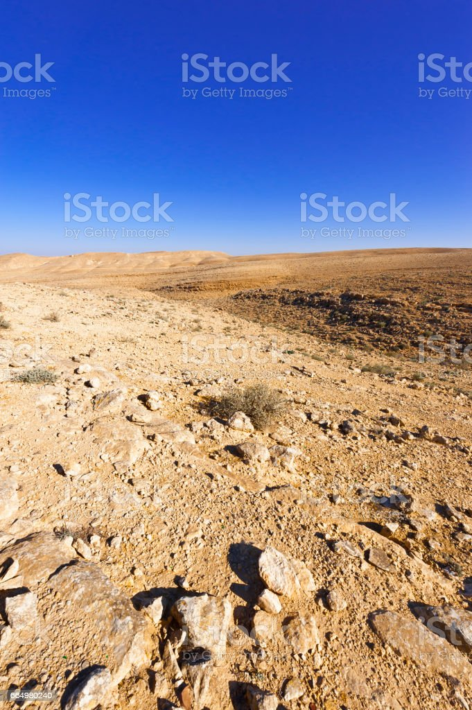 Stone Desert in Israel stock photo