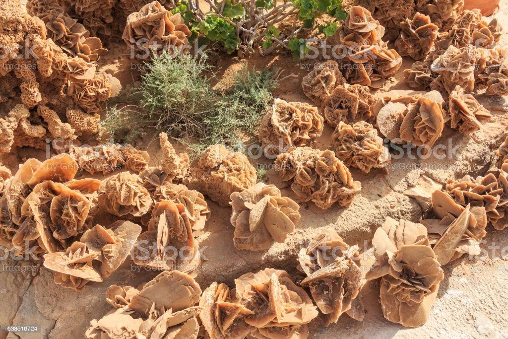 Stone desert roses stock photo
