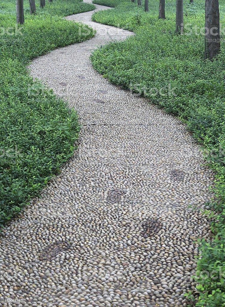 stone Footpath in Garden stock photo