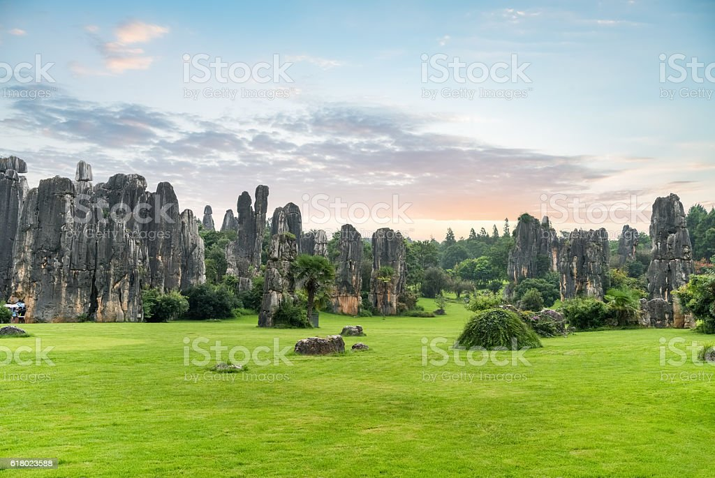 stone forest scenic stock photo