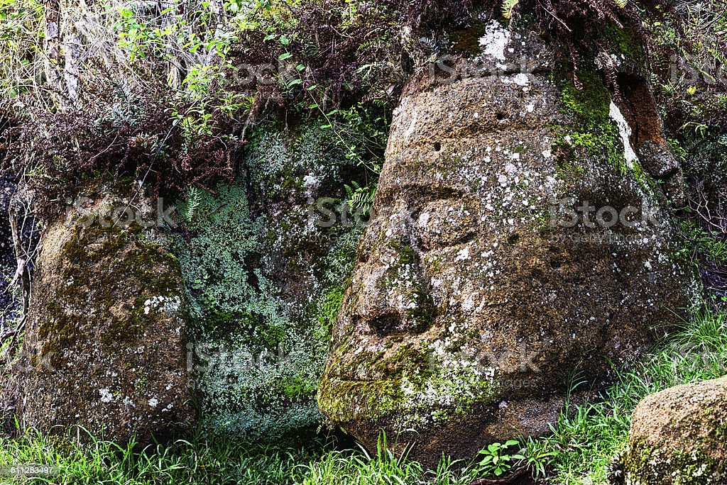Stone head on Floreana Island in the Galapagos stock photo