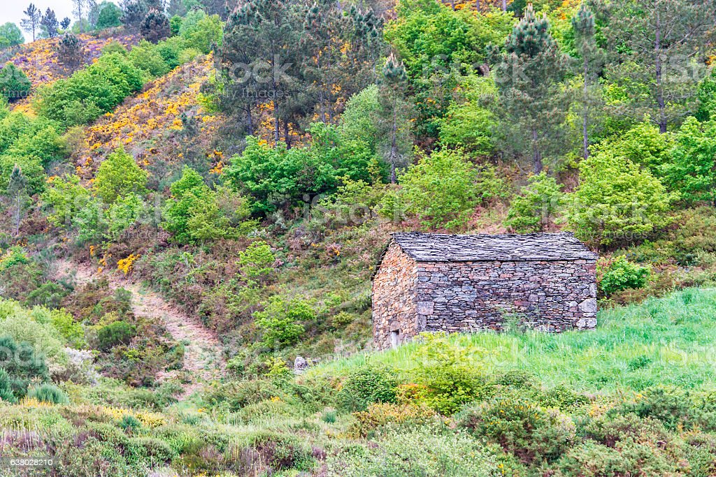 Stone hut between the vegetation stock photo