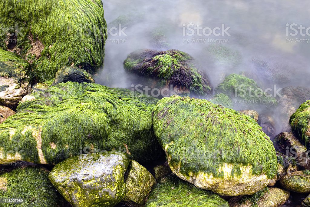 Stone in Sea Water. Color Image royalty-free stock photo