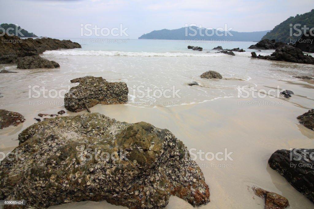 stone in seaside stock photo