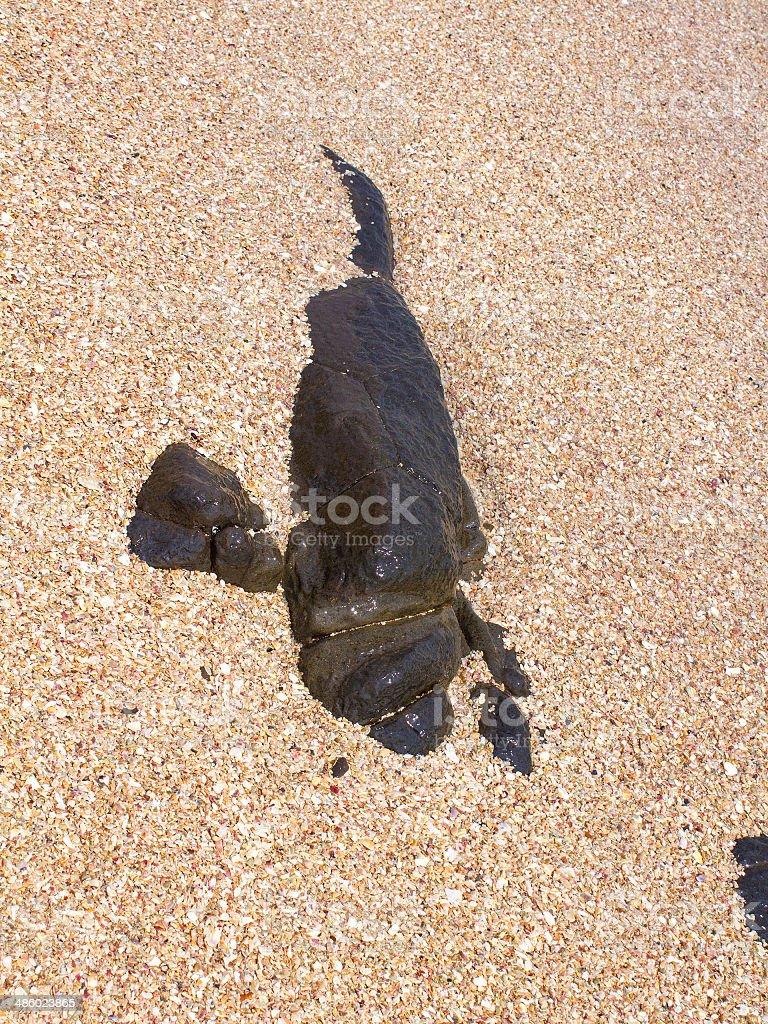 Stone Inside the Sand stock photo