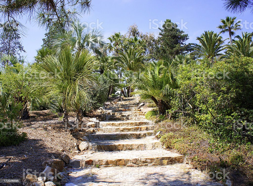 Stone ladder in tropical park royalty-free stock photo