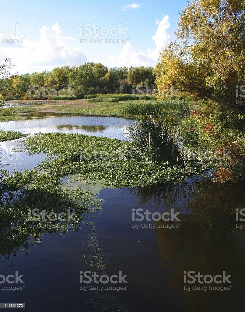 Stone Lakes National Wildlife Refuge stock photo