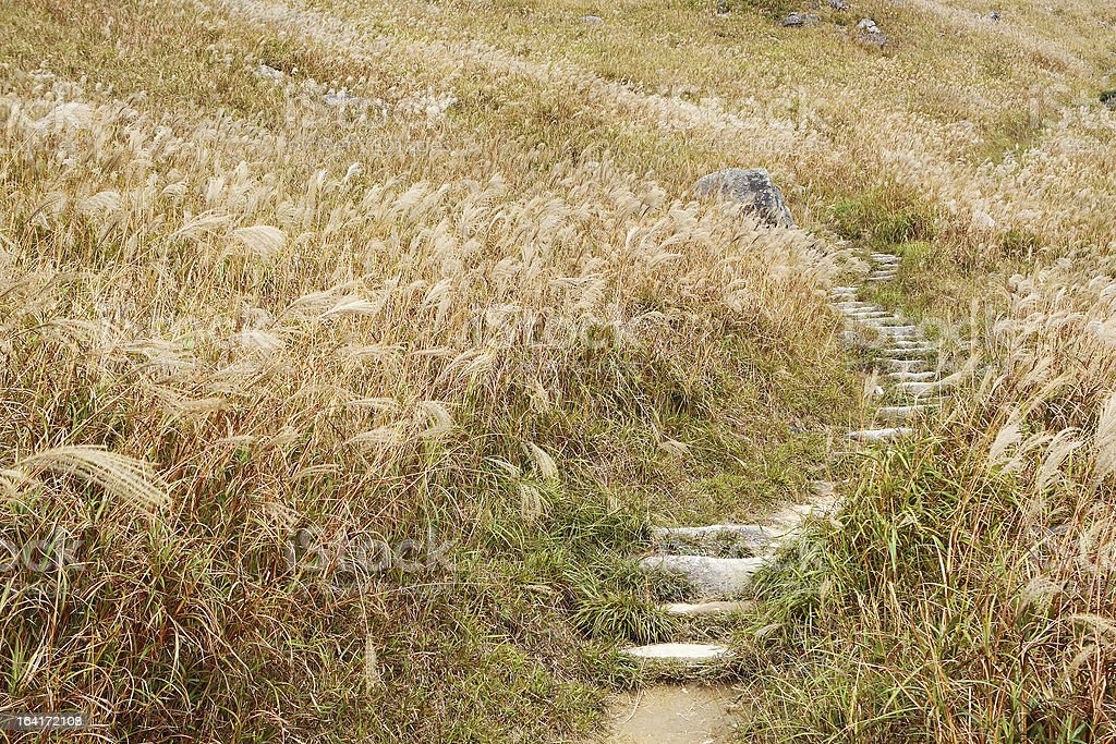 Stone path in the mountains royalty-free stock photo