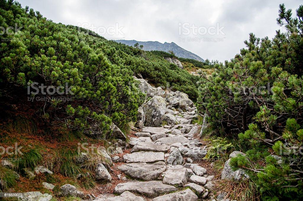 stone path / mountain path stock photo