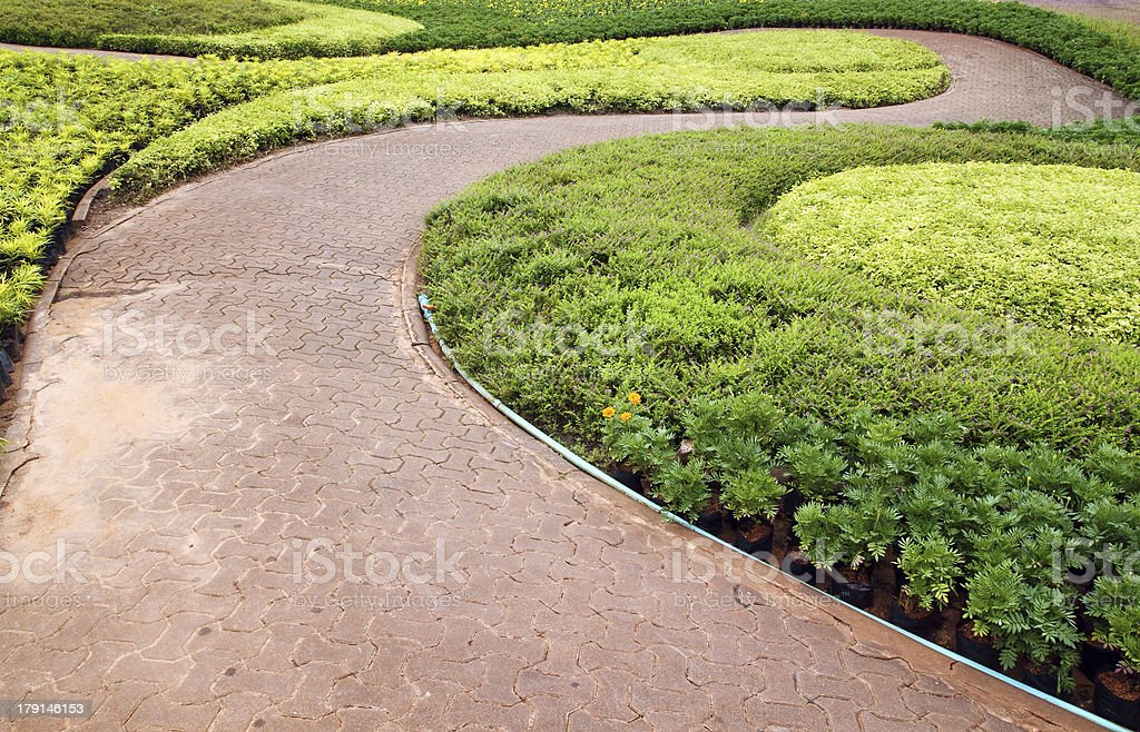 Stone pathway in garden royalty-free stock photo