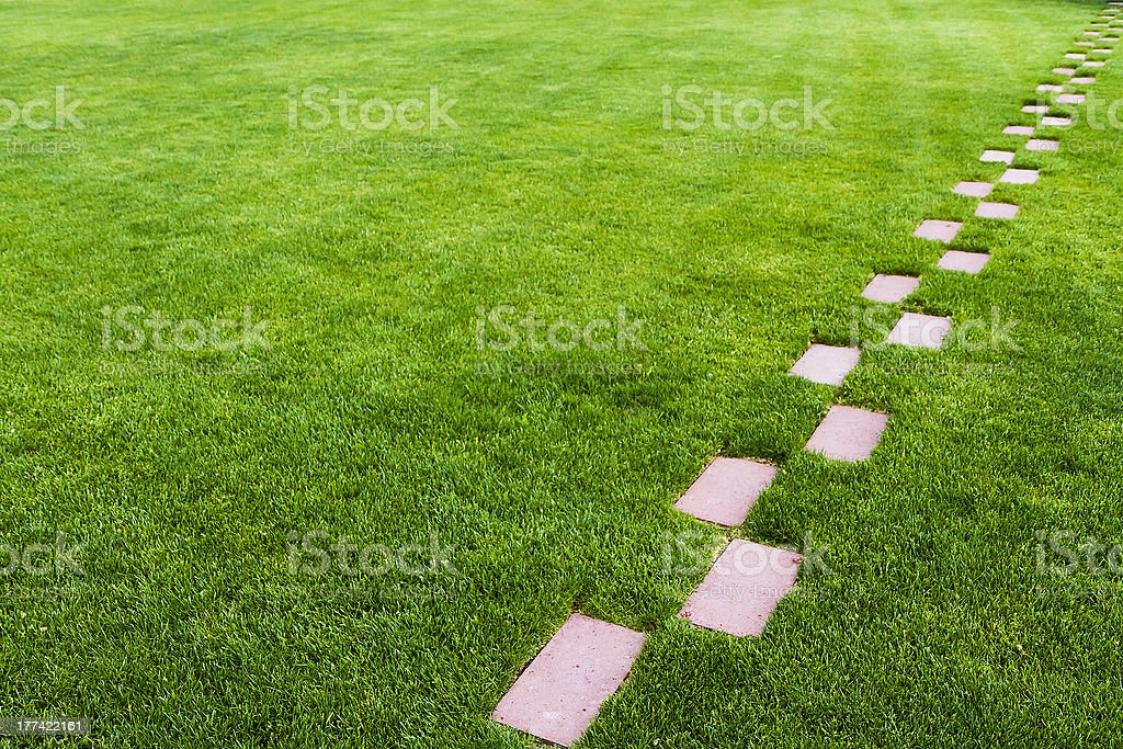 Stone pathway in the grass stock photo