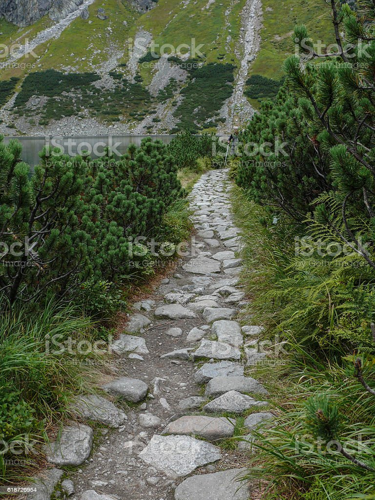 Stone pathway in the mountain stock photo