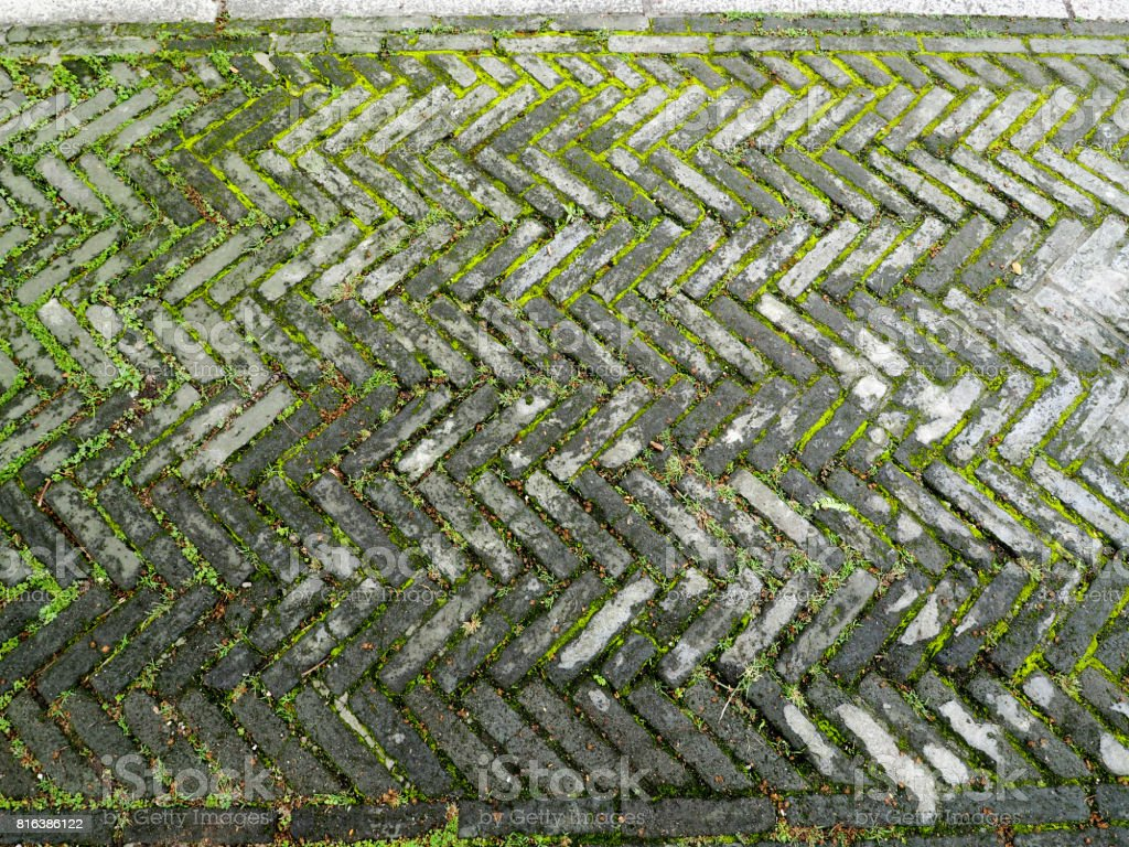 Stone pathway pattern with green grass , pathway of garden stock photo