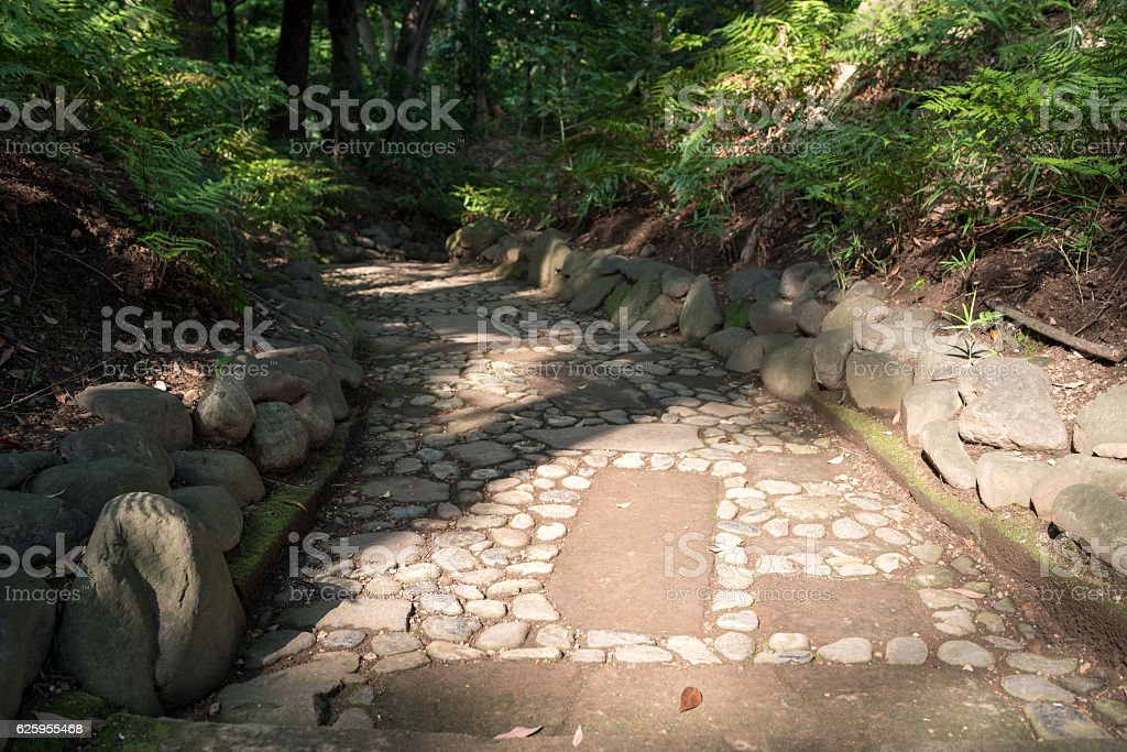 Stone pavement and tree in Japan stock photo