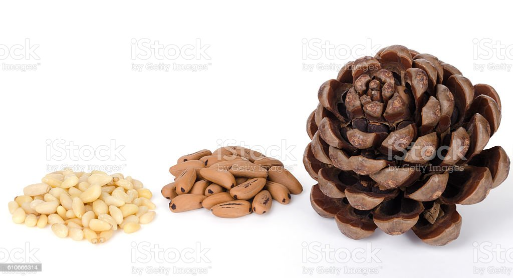 Stone pine cone with seeds and shelled nuts stock photo