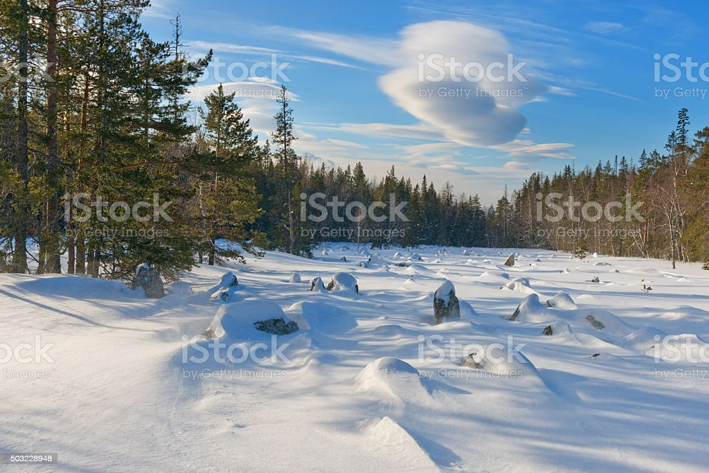 Stone river and pine during incipient storms in mountain. stock photo