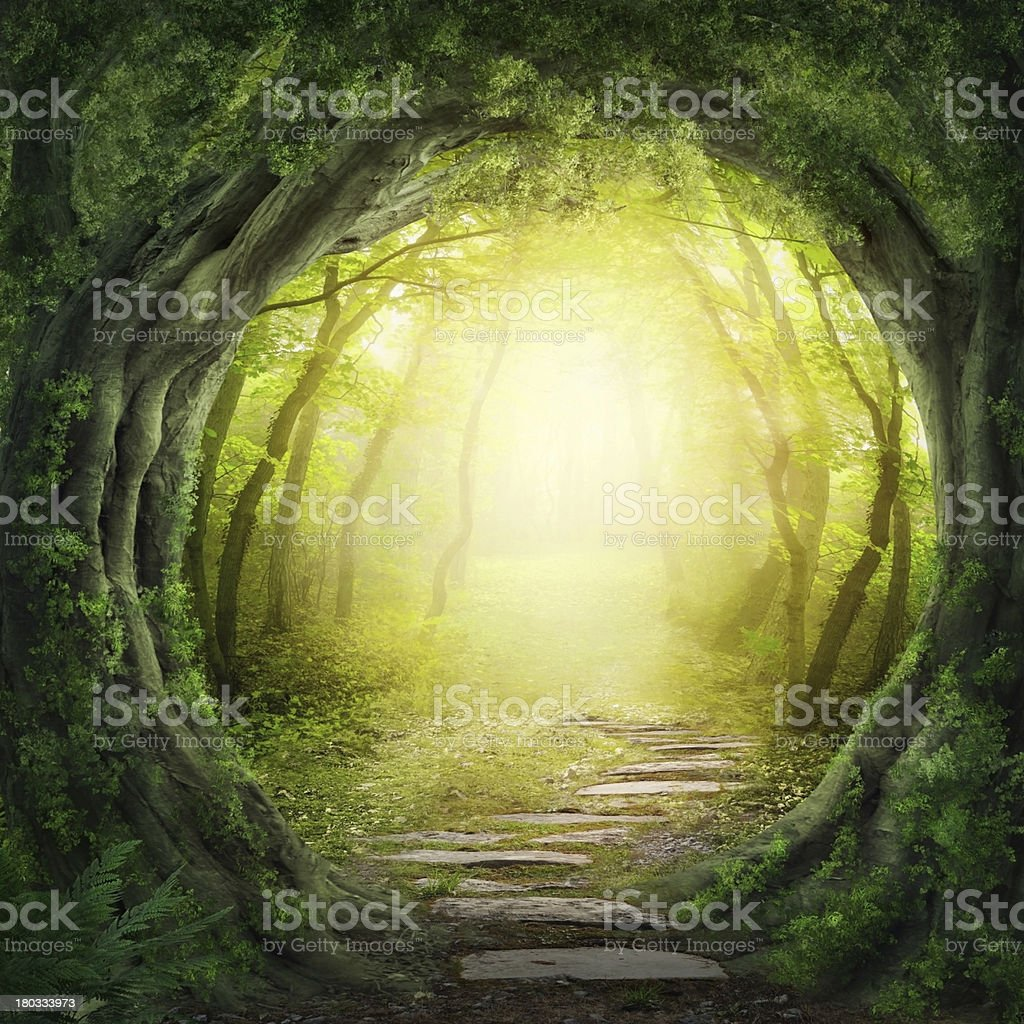 Stone road in magic forest leads to haze of light stock photo