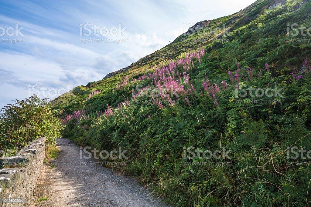 Stone rocks mountain hiking path at Irish seacoast. Bray, Greystone stock photo