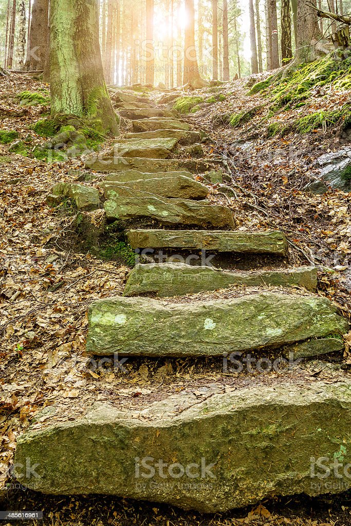Stone staircase leading up with sunlight stock photo